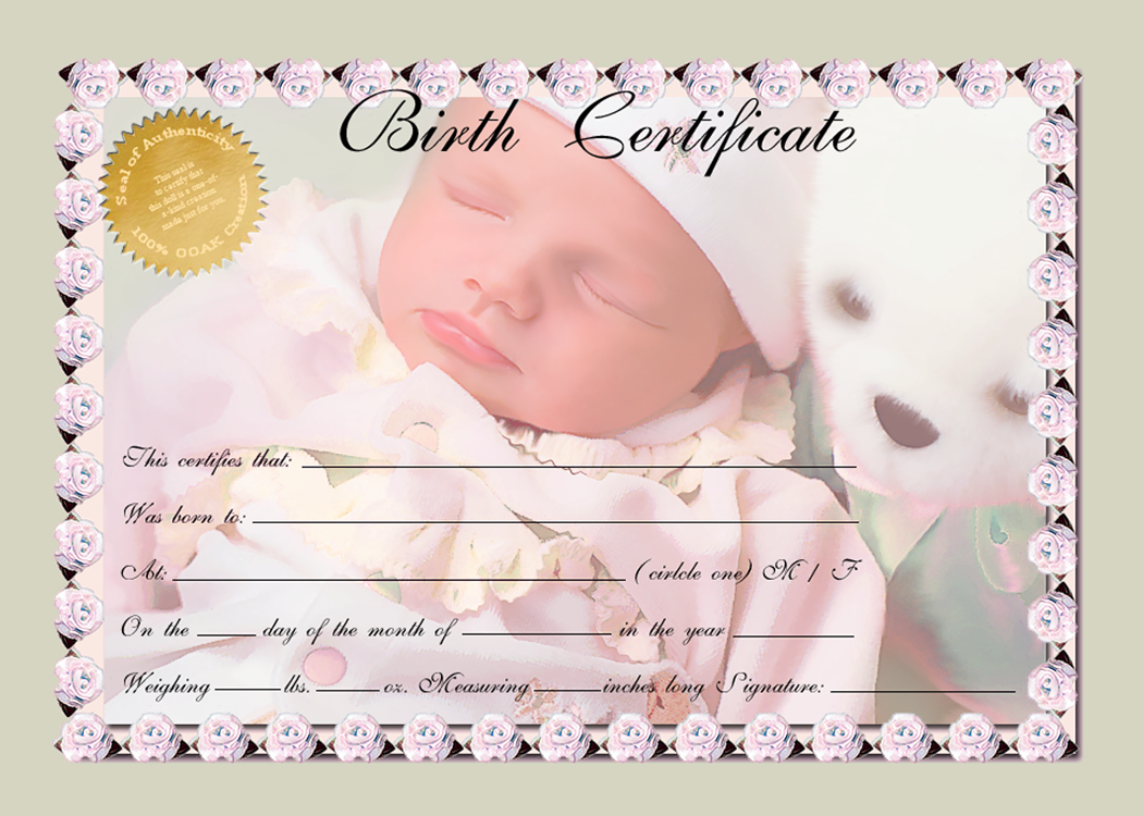 Nc volleyball academy powered by oasys sports for Baby doll birth certificate template