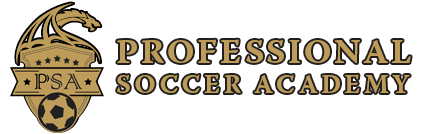 Professional Soccer Academy